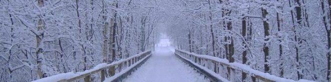 cropped-edcebebbbba33746d00e678fe48aa52c-winter-landscape-landscape-photos.jpg