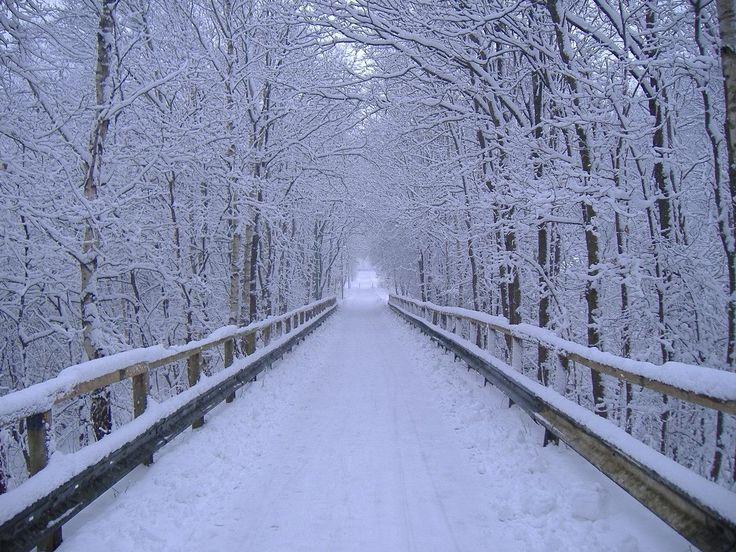 edcebebbbba33746d00e678fe48aa52c--winter-landscape-landscape-photos.jpg